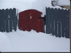 Snowmageddon 012